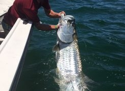 July Fishing Report 07/03/18